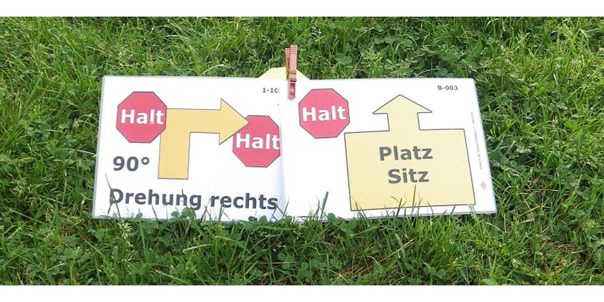 rally-obedience SSGH Bockenheim Hundeausbildung Hundetrainer Hundesport