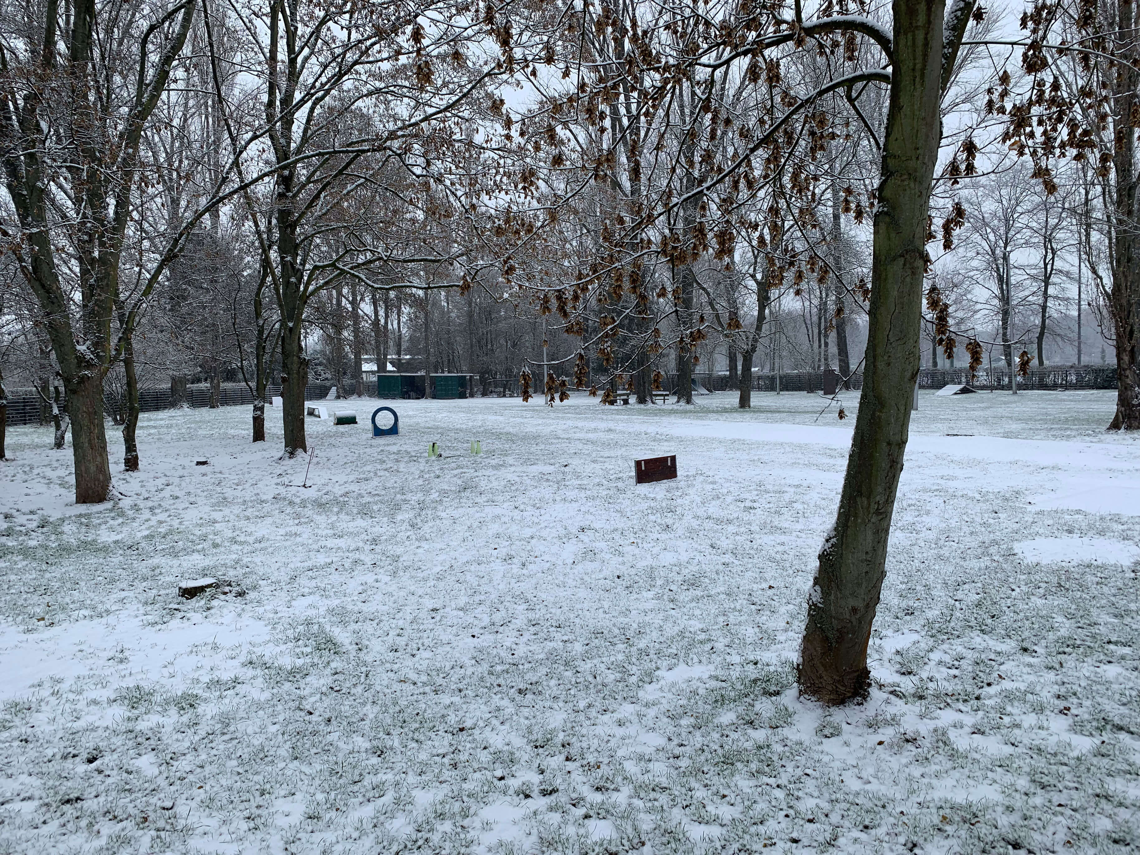ssgh-winter-hundeplatz