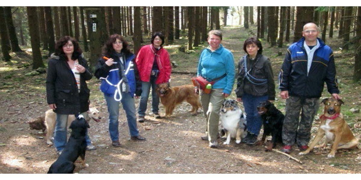 Der Verein SSGH Bockenheim Hundeausbildung Hundetrainer Hundesport