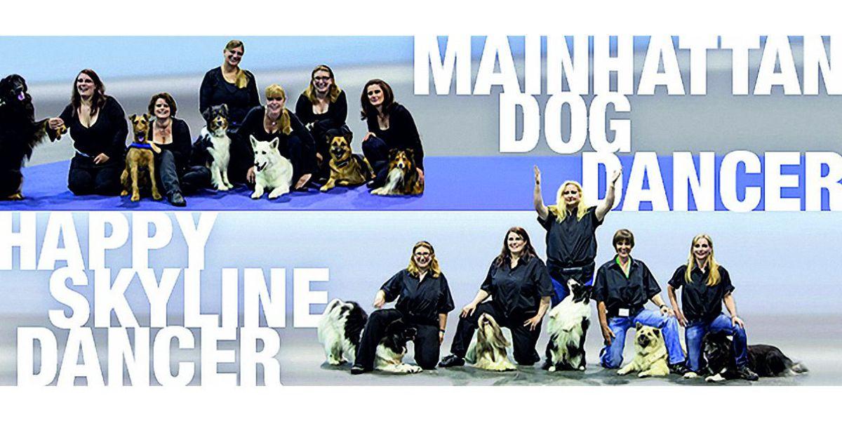 DogDance SSGH Bockenheim Hundeausbildung Hundetrainer Hundesport